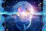 Память и работа мозга