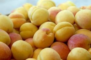 Armyanskiy-abrikos