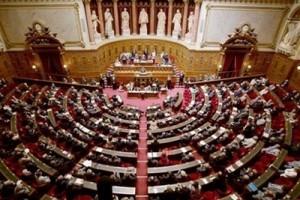 Французские парламентарии