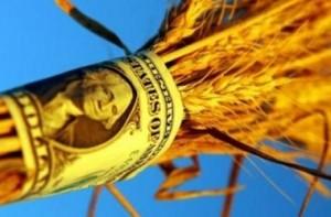 импорта зерна