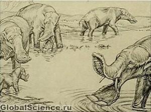 Доисторические слоны