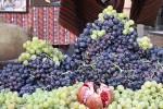 Очарование армянского винограда