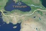 танап