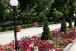 парк Комитаса