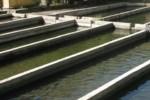водопользование