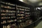 Коллекция напитков