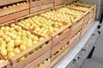 абрикосы из Армении