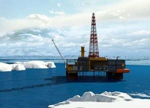Арктические нефтегазовые участки