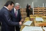Фрукты в Армении