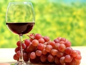 vino-i-vinograd