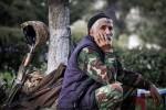 армянский доброволец