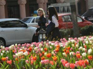 Yerevan