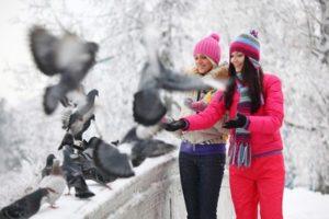 люди и птицы