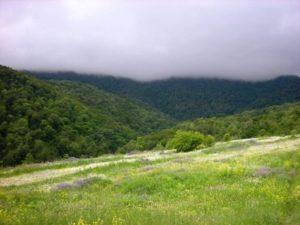 горы и леса Армении