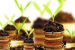инвестиции в агросектор