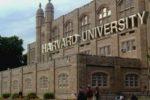 В Гарварде