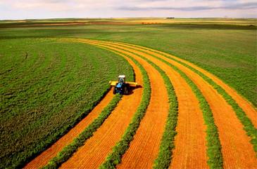 АБР не исключает возможности включения в Стратегию партнерства с Арменией компоненты по сфере агросектора