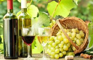 Проект «Sea of Wine» объединит винодельческий сектор Армении, Грузии, Греции и Украины