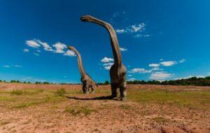 В Австралии открыли неизвестный ранее вид гигантских динозавров